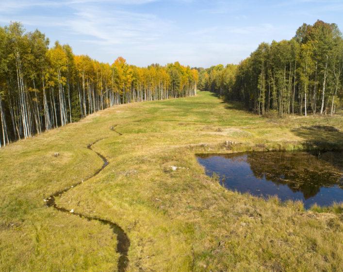 revitalizace Lužního potoka